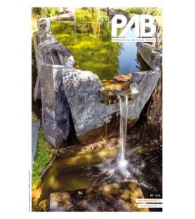 PAB 55 4/2017